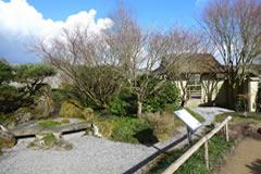 ウェールズ植物園日本庭園